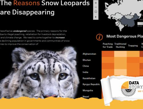 DataViz del mese: l'estinzione del leopardo delle nevi